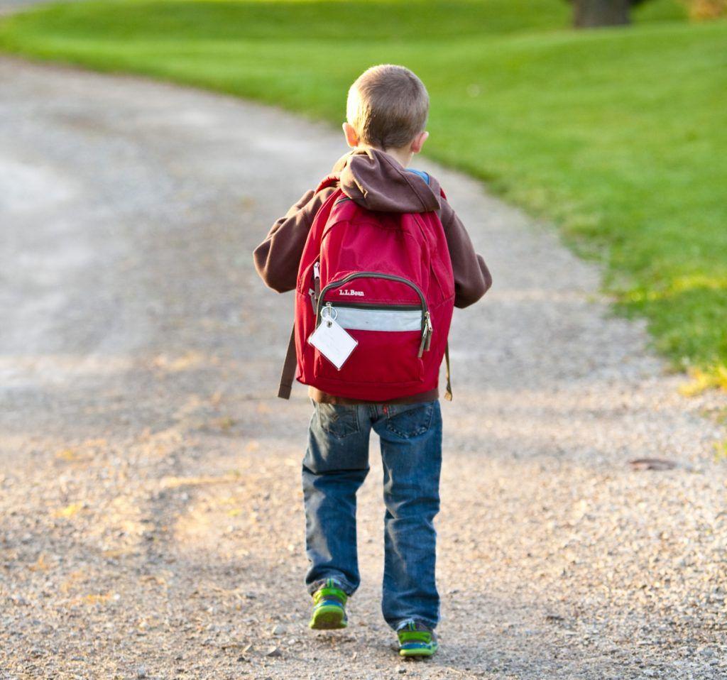 Al menos el 70% de los escolares llevan excesivo peso en sus mochilas, por mochilasescolares.site