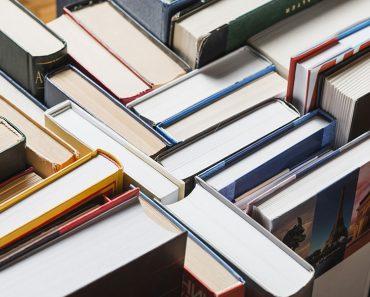 texto literario cuáles son sus partes