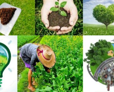 mejorar el medio ambiente