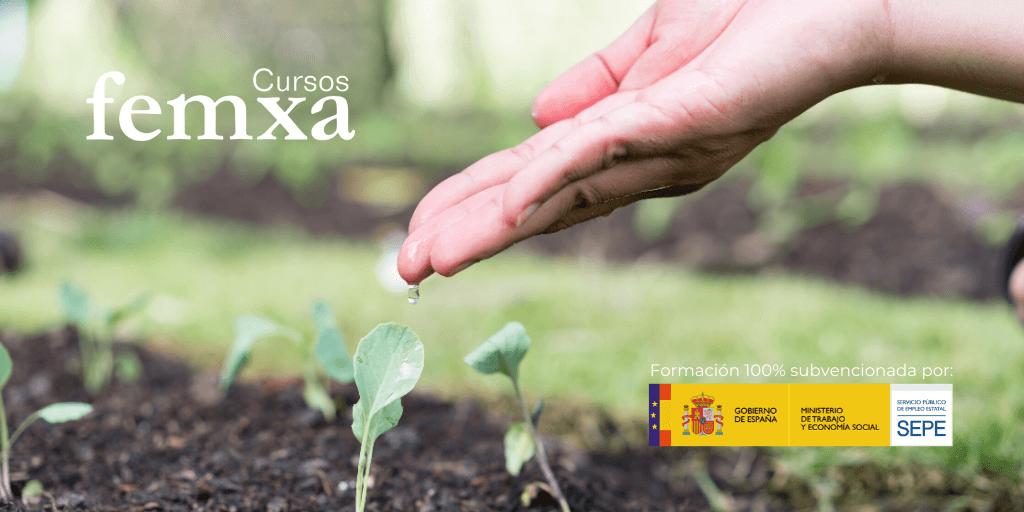 El SEPE impulsa el sector agrario y medioambiental con cursos online 100% subvencionados