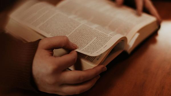 cómo se organiza la biblia