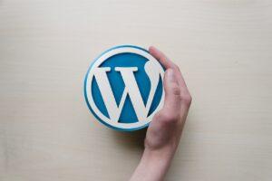 qué es un plugin en WordPress